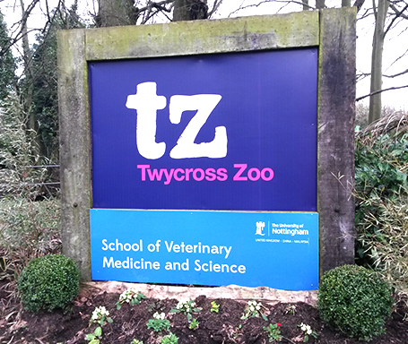 Tywcross Zoo